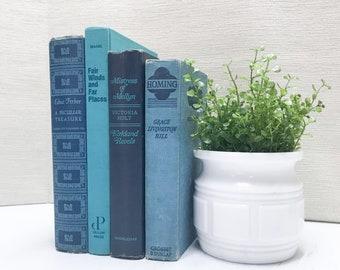 Blue Decorative Books, Shelf Decor, Old Books, Blue Home Decor