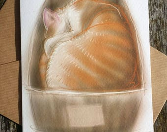 greetings card: 'Do Not Disturb till Dinnertime' - large ginger and white cat in a small cardboard box, art card, blank inside