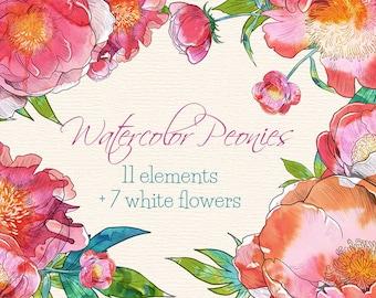 Watercolor Peonies - 18 watercolor clip arts, watercolor peonies, watercolor flowers, watercolor elements, spring flowers clip arts, pink