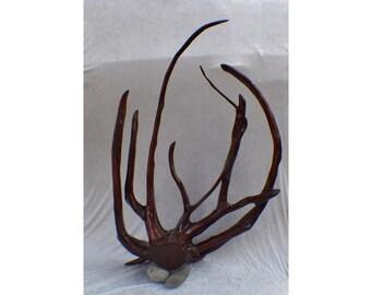 Octopus Root Sculpture - Large Centerpiece Item