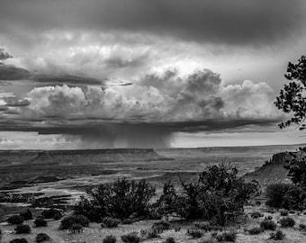 Black and White Art, Black and White Desert Print, Utah Print, Canyonlands Photo, Utah Photography, Southwest Print, Photography Southwest