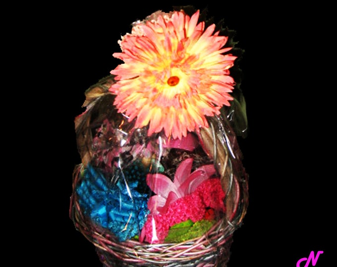 Baker's Dozen Mixed Hair Accessories Gift Basket Ready On Sale Now