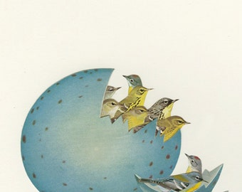 Just hatched. Limited edition print of an original collage by Vivienne Strauss.