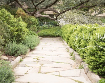 Garden Digital Photography Background Stone Path with Foliage & Tree Branch