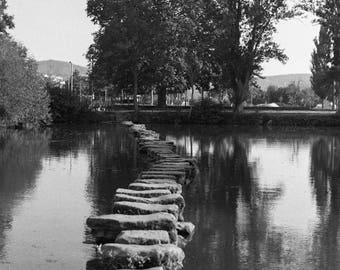 Fine art limited edition Black and white film photography - The Path