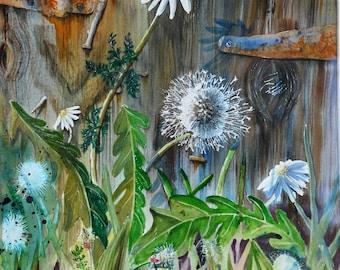 old green rusty painting original flowers garden watercolor wears watercolor dandelions seeds herbs