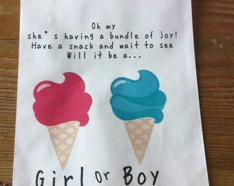 Ice cream Bag party favor bag utensil bag  gender reveal bag