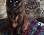 Cat blanket. Small croche...