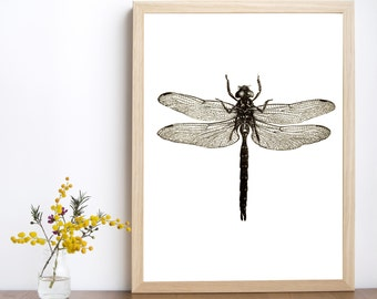 Dragonfly print, dragonfly decor, dragonfly poster, dragonfly printable, dragonfly art, insect print, dragonfly illustration,insect wall art