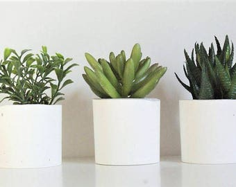Set of three /Concrete Air Plant Holder/Concrete Planters/ Succulent Planters/ Home decor/ White Concrete/ White Concrete pot/Gift for House