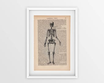 Skeleton printed on an old page, vintage print of a human skeleton a page from 1877, Gothic font on yellow page, anatomical print