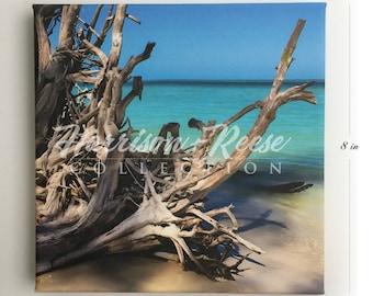 Beautiful Paradise Shore Canvas Print 8 x 8