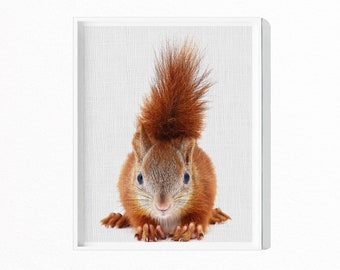 Squirrel Print, Woodland Animals, Animal Art, Baby Animals, Forest Animal, Nursery Decor, Woodland Nursery, Digital Download, Kids #131