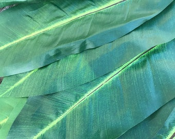20 buches of 14 leaves-wholesale for groups-all Large leaves, ti leaf, ti leaves, Tahitian costume, Polynesian crafts