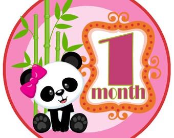 Pink Panda Monthly Baby Milestone Stickers