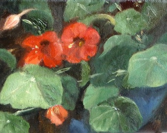 Nasturtiums Small Original Oil Painting Floral Painting Wall Decornting Flower Art Renate Diroll Art