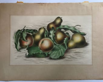 Original Pencil-Signed Litho ALBERT HECKMAN (1893-1971) 'Fruit Forms' WPA Listed