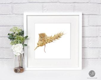 Nibbles Harvest Mouse Framed Print Artwork Picture