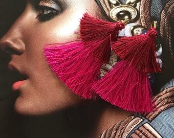 Double tassels earrings