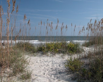 Footprints, Hilton Head, South Carolina,Landscape, Fine Art Photography