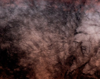 Moonlight photo, Dreamscape no16, Dawn Shadows, abstract moonlight, pink and grey sky print, abstract trees, fragments of light, dawn sky