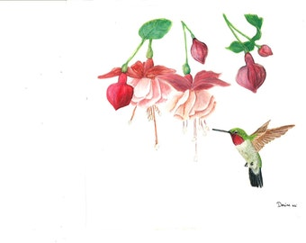 Hummingbird Watercolor Painting Print