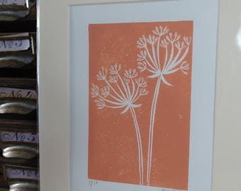 Limited edition flower lino prints - mounted