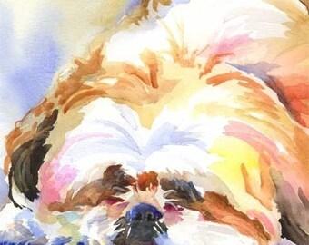 Shih Tzu Art Print of Original Watercolor Painting - 11x14
