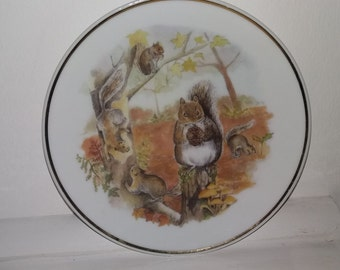 Squirrel Collectable Plate, Wildlife of Britain.