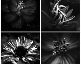 Set of 4 curated dark black and white dramatic floral prints, 5 x 7, 8 x 10, 11 x 14, gift ideas, home decor, housewarming, boudoir prints
