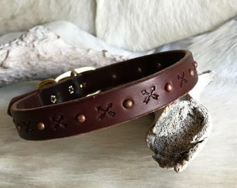 Leather dog collar with arrows and brass studs, dark brown, bridle leather,
