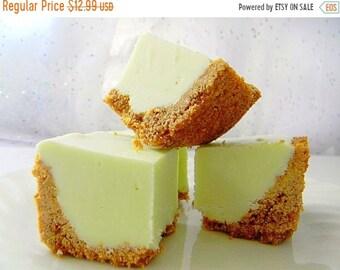MÉGA vente Julie de Fudge - KEY Lime Pie w/Graham croûte de biscuits - plus de la moitié livre