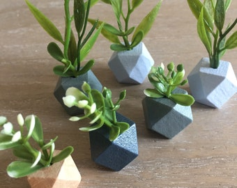 Modern dollhouse geometic plant
