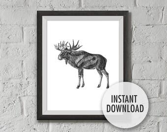 Printable Elk Vintage Illustration, Instant Download, 8x10 Print, Wall decoration, Wall Art Print, Printable Poster, Birthday Gift Ideas,