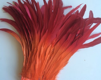 CARNIVAL COQUE TAIL / Two Tone, ombre, Flamenco red  and Orange  / C - 05