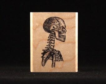 """Skeleton's Skull (1"""" x 1.94"""")"""