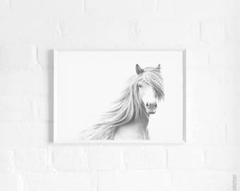 Horse A3 Art Print, Horse Poster, Horse Print, Horse Photography, Kids Room Decor, Equestrian Decor, Black and White, Monochrome