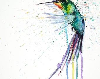 Watercolour print // Hummingbird IV