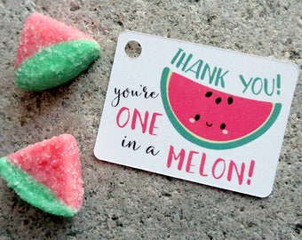 Watermelon Thank You Tags You're One in a Melon Thank You Pun Labels for Party Favors Cute Watermelon Gift Tags Set of 30