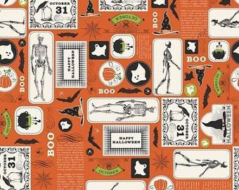 extra15 30% OFF  Riley Blake Designs Eek Boo Shriek Orange Main