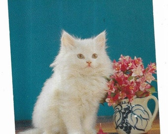 Vintage Greetings Cats Kittens Postcard A Bouquet Of Flowers For You White Persian UNUSED
