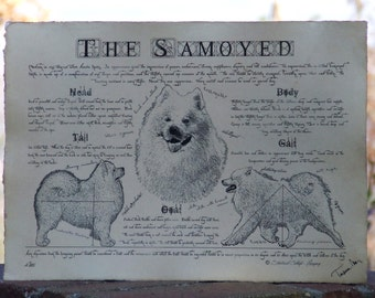 Antique styled dog standard - Samoyed