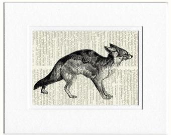 fox I dictionary page print