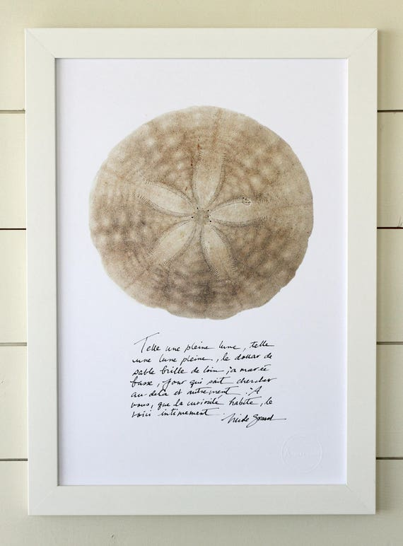 Sand dollar poster with calligraphied poetry