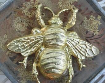 Jumbo Honey Bee (1 pc)