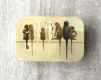 Monkey tin LARGE, Notions tin