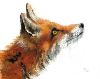 Fox - Archival print of watercolor painting. Art Print. Nature or Animal Illustration. Rust and Orange.