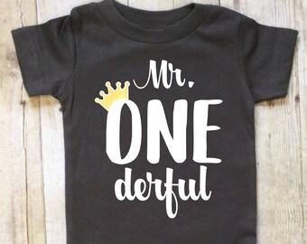 Boys First Birthday Bodysuit-Boys First Birthday Shirt-Mr. Onederful Shirt-First Birthday Bodysuit-Crown-Short Sleeved-Cake Smash Shirt