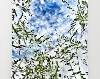 Grass Tapestry, Cloud Tapestry, Clody Sky Large Wall Decor, Dreamy, Dorm, Office, Whimsical, Wall Hanging, Dorm Privacy Screen,Nature Decor