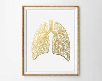Human Anatomy Print, Anatomical Poster, Human Lung Print, Doctor Poster, Medical Wall art, Anatomy Poster, Faux Gold, Modern Office Print